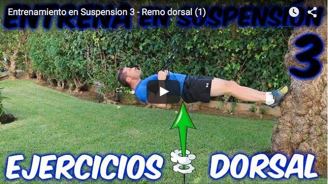 trx ejercicios dorsales fisiomuro