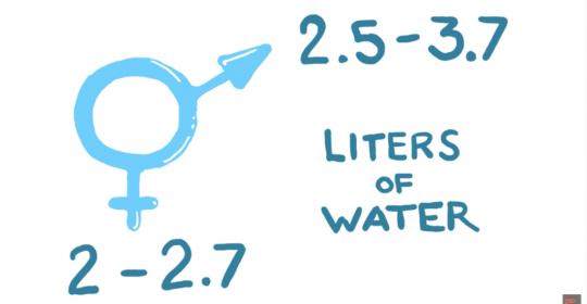hidratacion y fisiomuro02