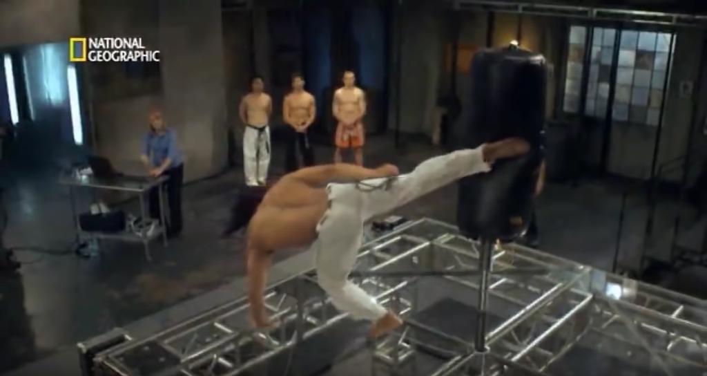 artes-marciales-ciencia-y-fisiomuro