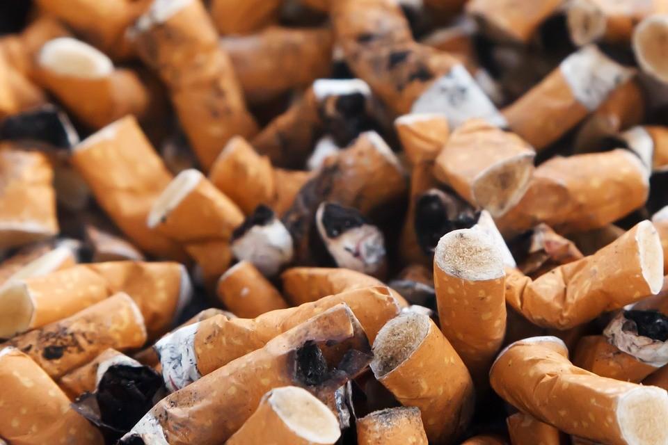 fisiomuro y la industria tabacalera02