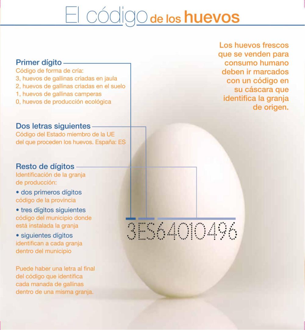 los numeros de los huevos y fisiomuro