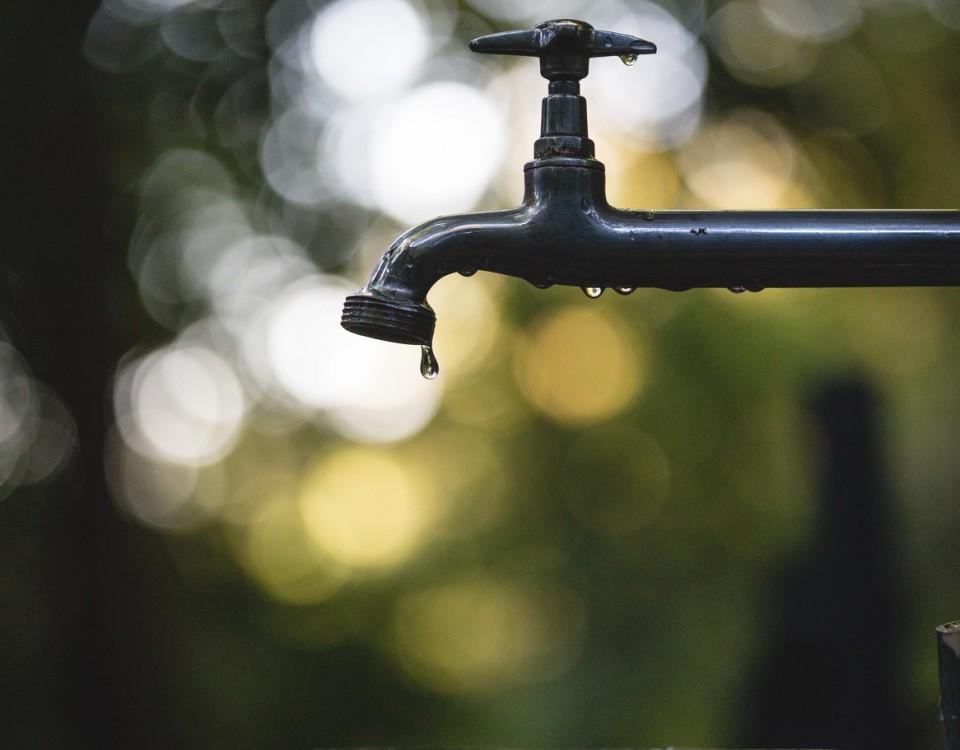 agua cruda y fisiomuro