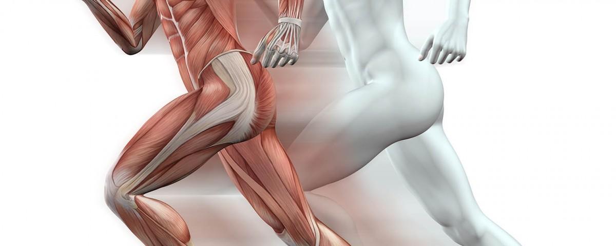 IV Curso de Técnicas Neurofuncionales Avanzadas Aplicadas al Tratamiento de Lesiones Deportivas